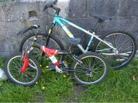 各种尺寸的自行车