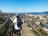 沿着海岸骑自行车