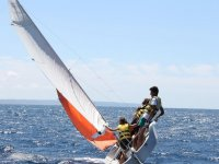 学习驾驶帆