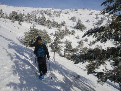 GranAlpina Raquetas de Nieve