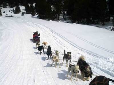 Paddle in Spain Mushing