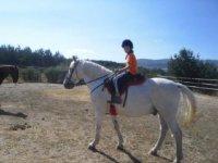 Rutas a caballo en la Sierra de Gredos.