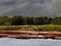 Incomparable landscapes on horseback