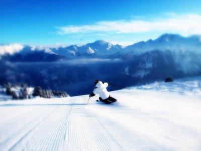 Alea Esquí