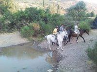 ruta con el caballo