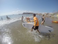 On the surfboards in the water