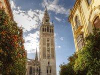 Visita Monumental Sevilla