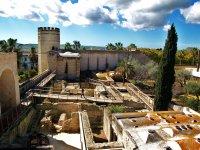 Visita Monumental Jerez