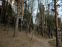bosque privado