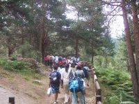 Excursiones tematicas