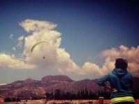 Looking at a paraglider