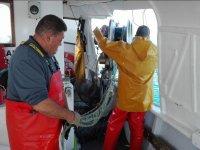Labores de pesca en Castellon