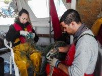 Soltando las capturas de las redes en Castellon