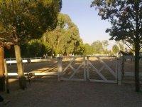 paseo a caballo en un recinto cerrado