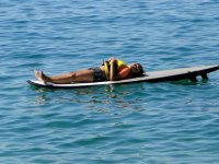 resting on the sup