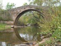 Nuestro puente