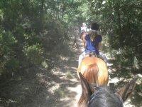 Rutas a caballo en León