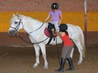 Consejos sobre el caballo