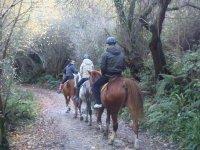 Ruta a caballo personalizada