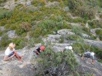 Climbing the ferrata in group