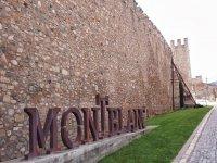 Visita Montblanc