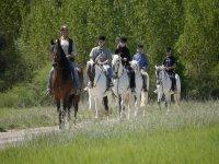 Passeggiate a cavallo lungo la strada