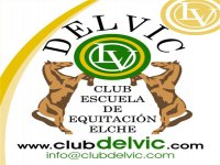 Delvic