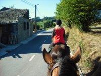 骑马--999-自由骑马