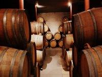 Degusterai i vini della denominazione di origine Utiel-Requena