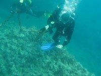 dos buceadores explorando el fondo marino