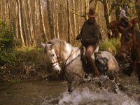 Crossing the river with the horse