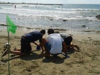 Construcciones en la arena