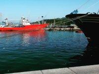 Visitando el Puerto