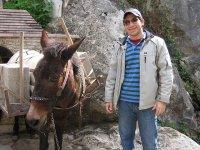 con el burro