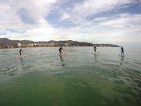 Excursion en grupo de paddle surf