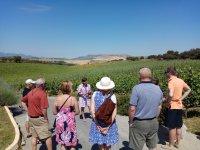 Visita guiada Andalucia