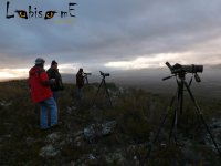 Observacion con material optico profesional