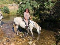 Equino refrescandose en el rio
