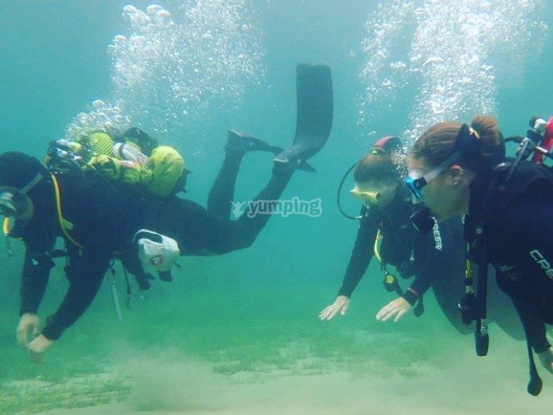潜水员团体