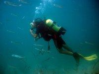 Primeras impresiones bajo el agua