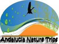 Andalucia Nature Trips Ornitología