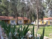 Our hostel