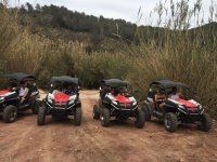 Fleet of buggies in the excursion