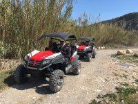 Taking the buggies along the road between reeds