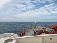 餐饮海豚帆船