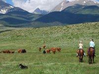 Ruta de la trashumancia a caballo
