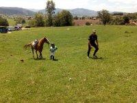 Pequeno jinete llevando su caballo