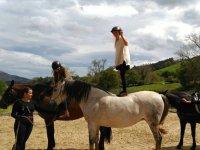 Subida de pie en el caballo