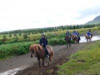 拉里奥哈的骑马之旅