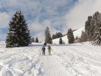 Pasando con raquetas por el camino nevado